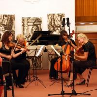 Mezinárodní houslové kurzy