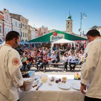 Gastronomické slavnosti Magdaleny Dobromily Rettigové